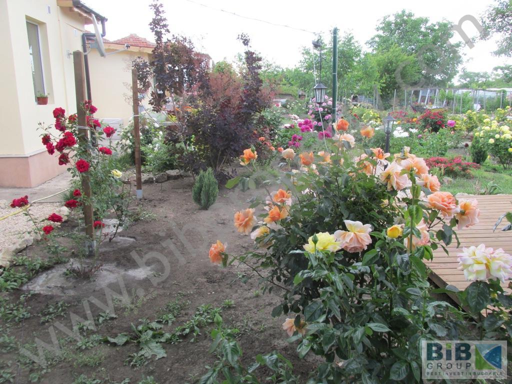 house with a big garden near provadia u2014 bib group